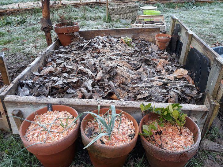 Jardinière en palettes et planches