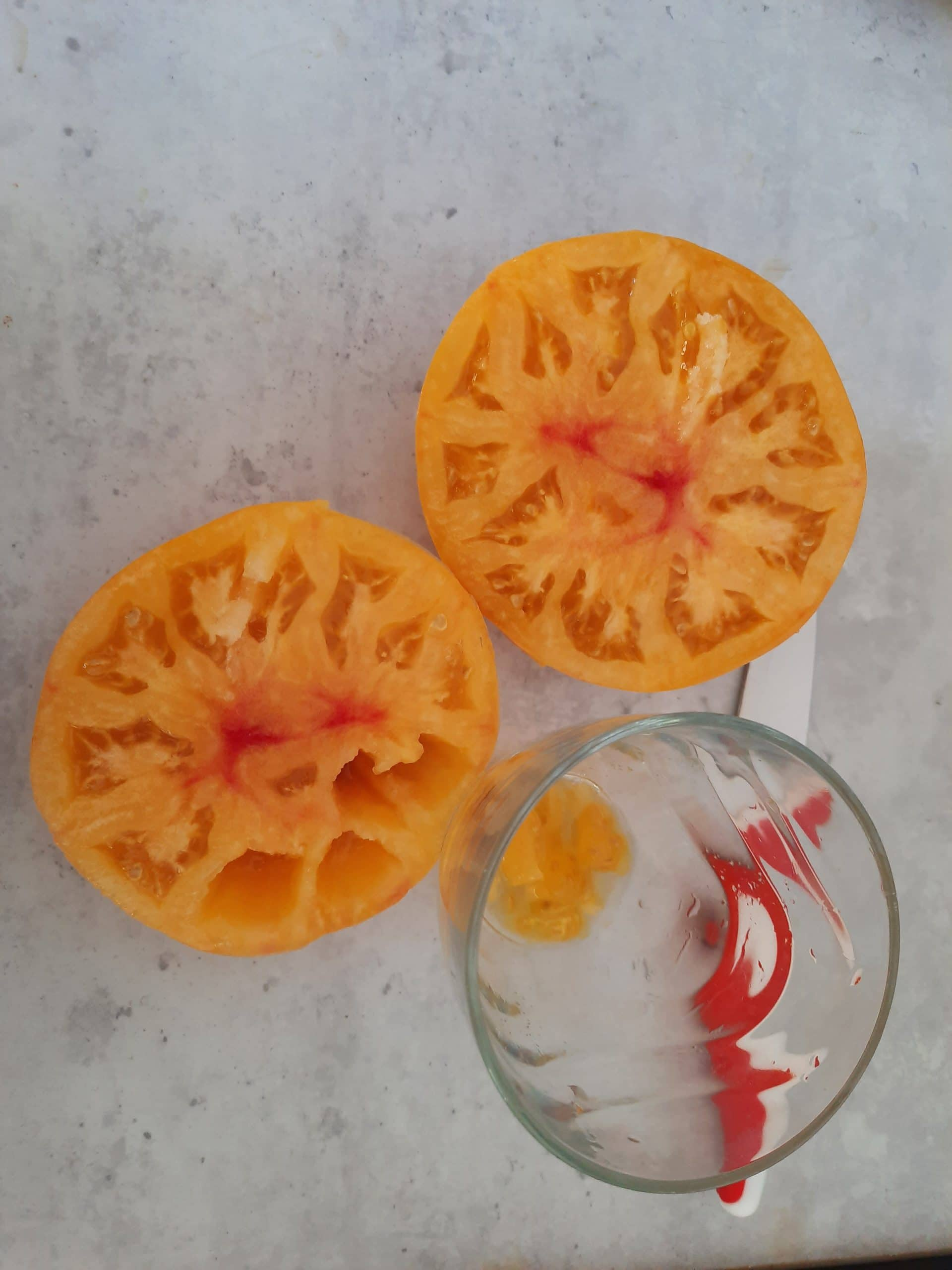 récupérer les graines d'une tomate