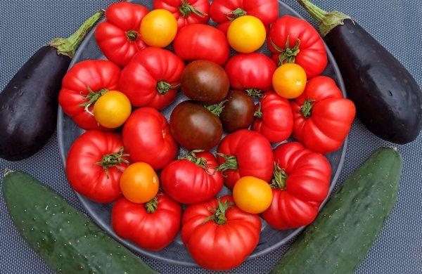 les légumes d'aout